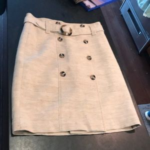 Ann Taylor A Line Skirt